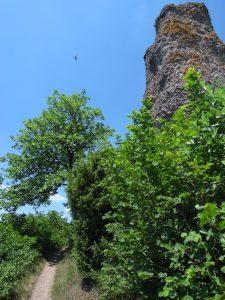 Eifelsteig Felsen bei Gerolstein